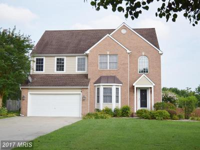 Easton Single Family Home For Sale: 8751 Mulberry Drive