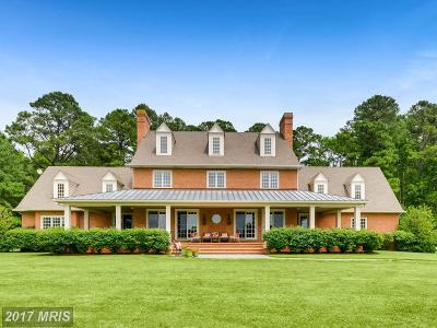 Bozman, Claiborne, Cordova, Easton, Mcdaniel, Neavitt, Newcomb, Oxford, Queen Anne, Royal Oak, Saint Michaels, Sherwood, St Michaels, St. Michaels, Tilghman, Trappe, Wittman, Wye Mills Single Family Home For Sale: 6398 Hopkins Neck Road