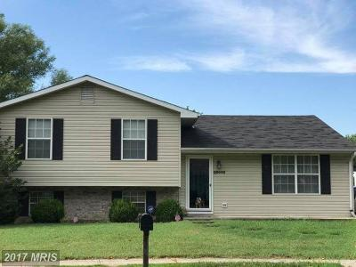 Talbot Single Family Home For Sale: 29442 Lisa Drive