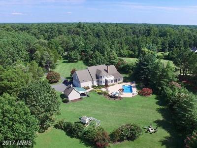 Easton Single Family Home For Sale: 8356 Aveley Manor Lane