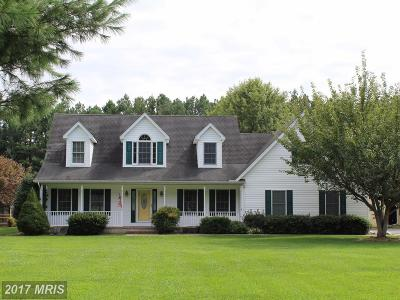 Talbot Single Family Home For Sale: 13399 Wye Landing Lane