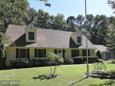 Saint Michaels Single Family Home For Sale: 7901 Pea Neck Road