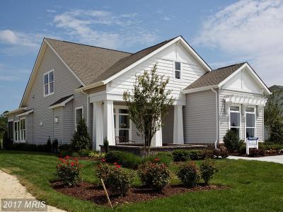 Easton Village Single Family Home For Sale: 28197 Hemmersley