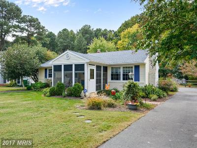 Saint Michaels Single Family Home For Sale: 1010 Riverview Terrace