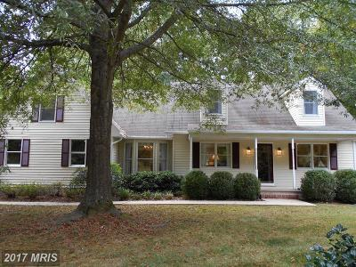 Easton Single Family Home For Sale: 28470 Kings Woods Drive