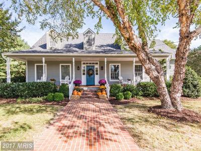 Single Family Home For Sale: 28800 Springfield Drive