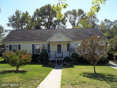 Easton Single Family Home For Sale: 29703 Lakeview Court