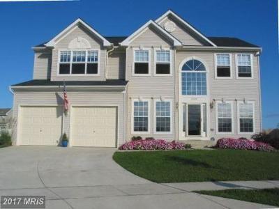 Easton Single Family Home For Sale: 29698 Old Creek Lane