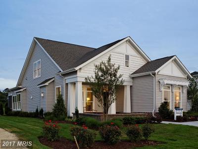 Talbot Single Family Home For Sale: Knapps Lot Street