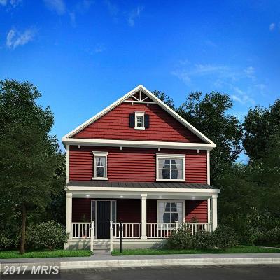 Saint Michaels Single Family Home For Sale: 302 Talbot Street N