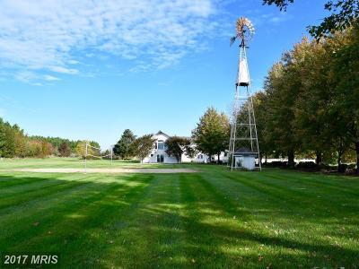 Royal Oak Rental For Rent: 6670 Cedar Cove Road #UNIT B1