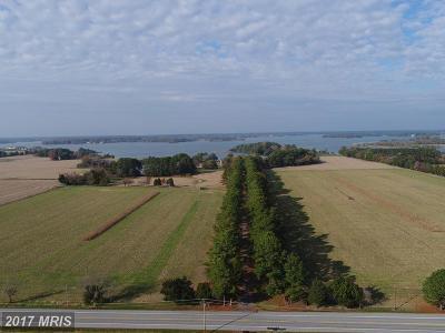 Oxford Farm For Sale: 5252 Long Point Farm Drive