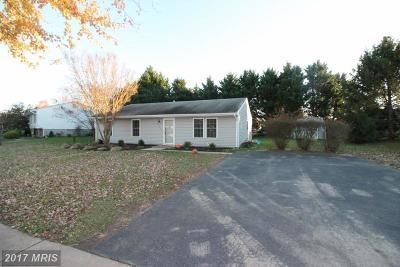 Easton Single Family Home For Sale: 29405 Rosebud Court