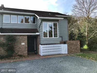 Saint Michaels, St Michaels, St. Michaels Rental For Rent: 24700 Deepwater Point Drive #1