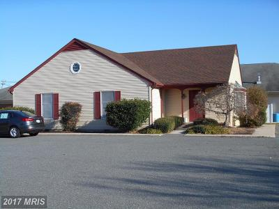 Easton MD Commercial For Sale: $390,000