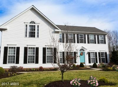 Easton Single Family Home For Sale: 7538 Seventeenth Drive