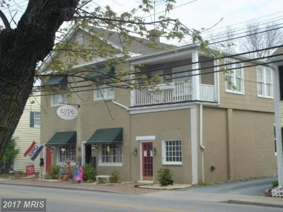 Commercial Lease For Lease: 413 Talbot Street S #1ST FLOO