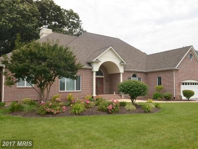 Easton Club, Easton Club East, Easton Club-East Single Family Home For Sale: 28502 Waterview Drive