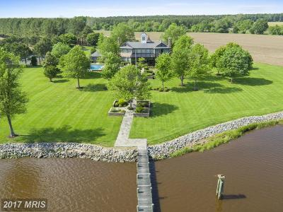 Cordova, Easton, Queen Anne, Wye Mills Farm For Sale: 26035 Marengo Road