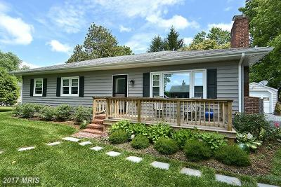 Easton Single Family Home For Sale: 28584 Edgemere Road
