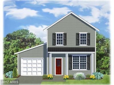 Saint Michaels Single Family Home For Sale: 105 Chesapeake Avenue