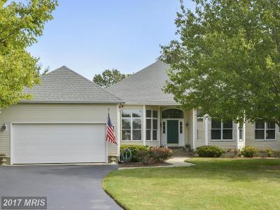 Easton Club Single Family Home For Sale: 28530 Waterview Drive
