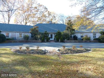 Easton Farm For Sale: 27047 Presquile Road