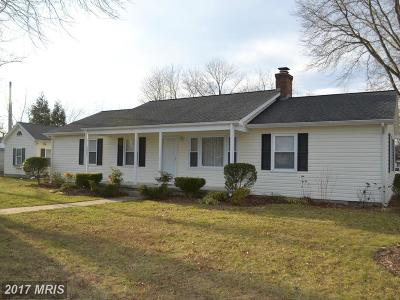 Easton Single Family Home For Sale: 407 Diamond Street