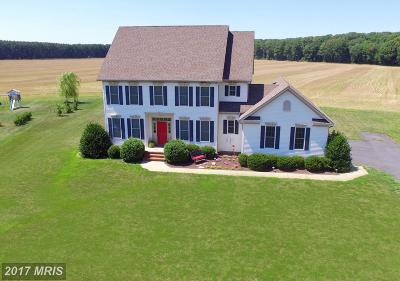 Wye Mills Single Family Home For Sale: 13557 Rustling Oaks Drive