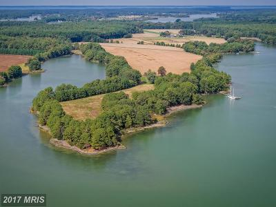 Bozman Farm For Sale: 7485 May Port Road