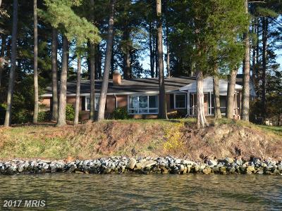 Saint Michaels Single Family Home For Sale: 24030 Porters Creek Lane