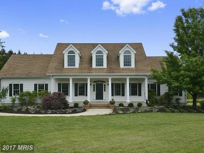 Easton Single Family Home For Sale: 9915 Eagle Drive