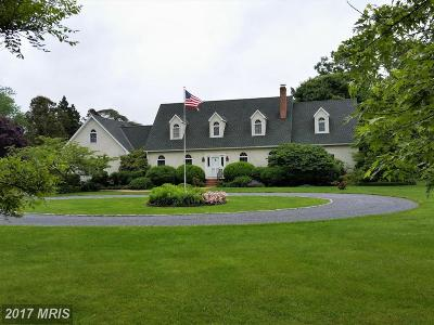Easton Single Family Home For Sale: 6313 Canterbury Drive