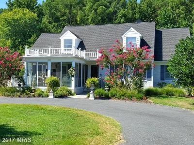 Saint Michaels Single Family Home For Sale: 1008 Riverview Terrace