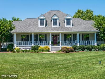 Easton Single Family Home For Sale: 27270 St Andrews Lane
