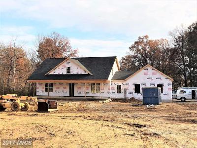 Single Family Home For Sale: 2423 Kaetzel Road