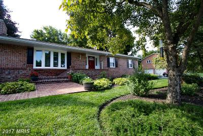 Hagerstown Single Family Home For Sale: 13810 Long Ridge Drive