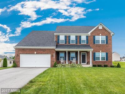 Hagerstown Single Family Home For Sale: 18705 Mary Flowers Way
