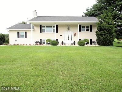 Boonsboro Single Family Home For Sale: 7933 Mapleville Road
