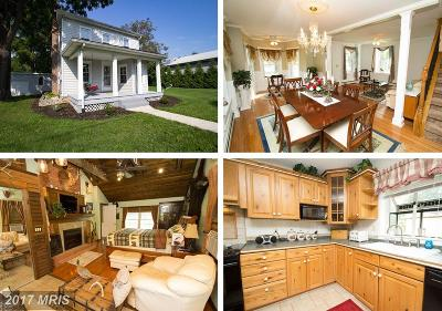 Boonsboro Single Family Home For Sale: 21280 Mount Lena Road