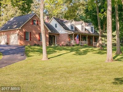 Hagerstown Single Family Home For Sale: 17125 Lappans Road