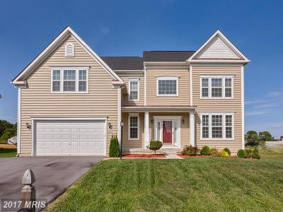 Hagerstown Single Family Home For Sale: 19006 Black Maple Way