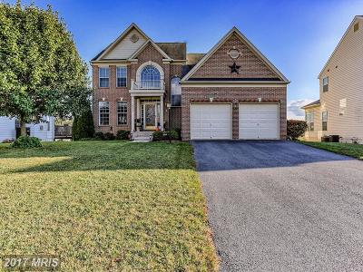 Hagerstown Single Family Home For Sale: 18219 Rockland Drive