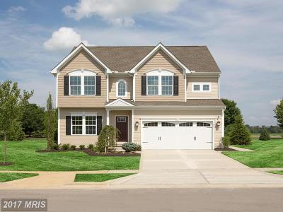 Hagerstown Single Family Home For Sale: 4 Dumbarton Drive