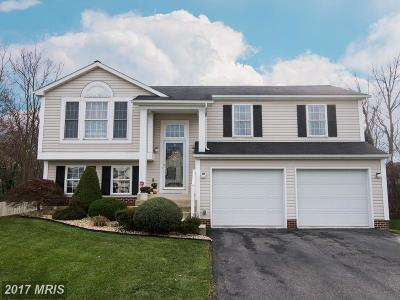 Hagerstown Single Family Home For Sale: 13012 Primrose Lane