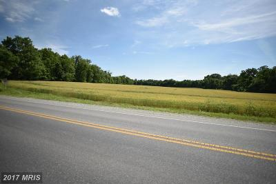 Hagerstown Residential Lots & Land For Sale: 1369 Marshall Street