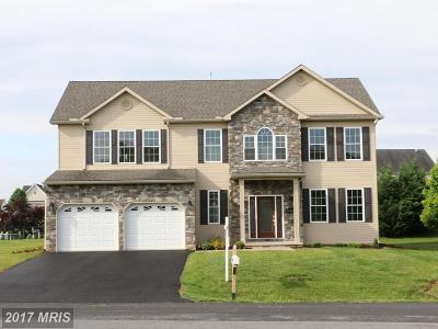 Hagerstown Single Family Home For Sale: 19111 Red Maple Drive