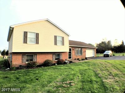 Smithsburg Single Family Home For Sale: 23409 Ringgold Pike