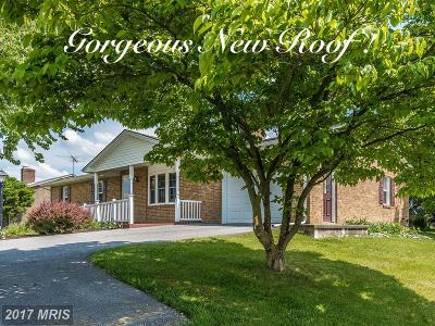 Hagerstown Single Family Home For Sale: 17911 Garden View Road