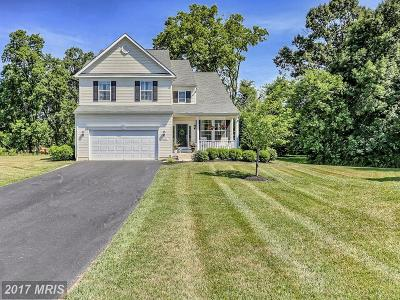 Hagerstown Single Family Home For Sale: 18104 Prestwick Terrace